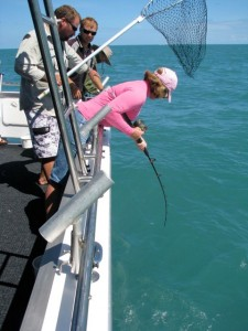 Catching the fish